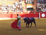 サラゴーサ市最大の祭り<ピラールの聖母祭>での闘牛、筆者撮影